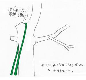 Img_0022_03